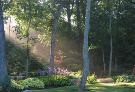 Private Residence | Lake Forest, IL | Woodland Garden